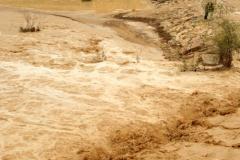 Wadi Flood 12